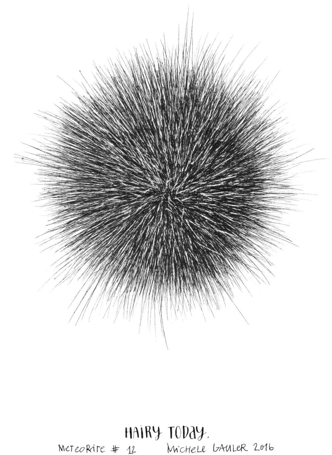 michelegauler_meteorite#12_1080px