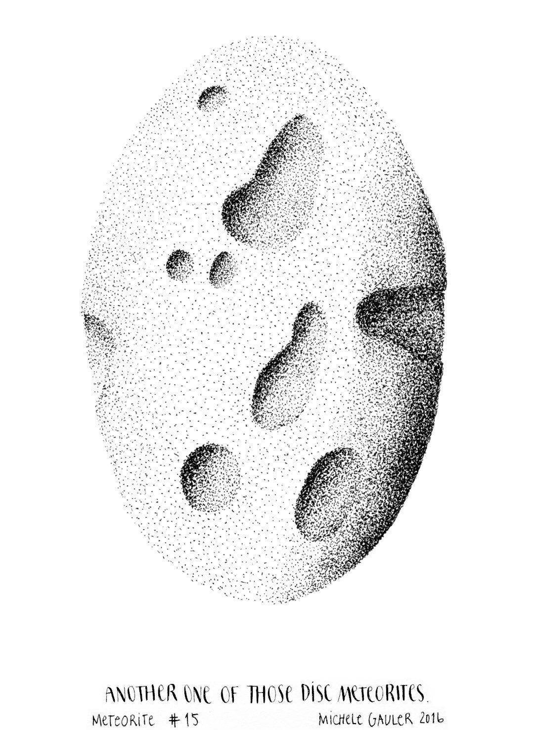 michelegauler_meteorite#15_1080px