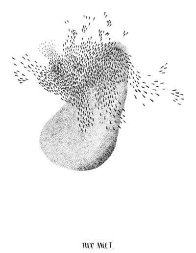 michelegauler_meteorite#18_1080px