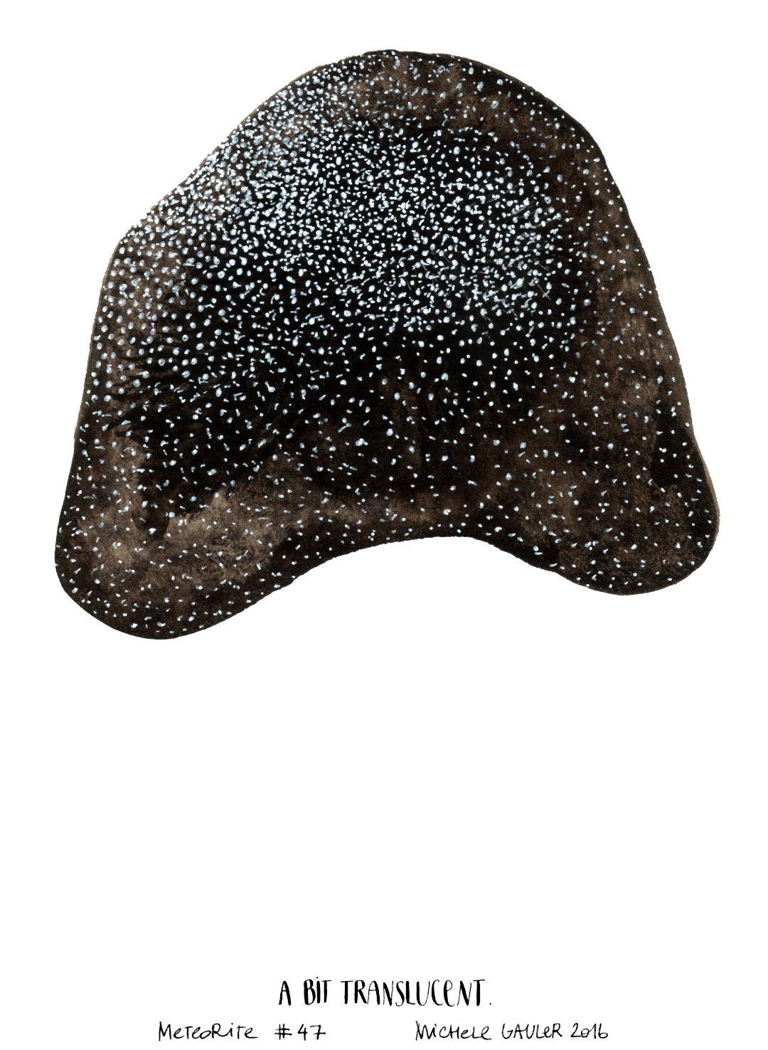 michelegauler_meteorite#47_1080px