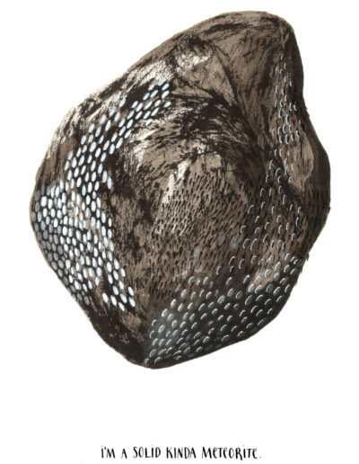 michelegauler_meteorite#62_1080px