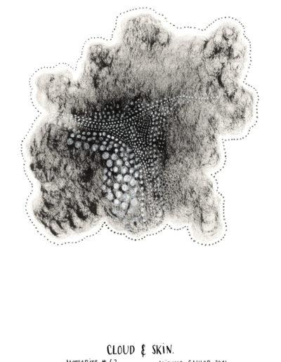 michelegauler_meteorite#63_1080px