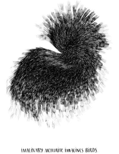 michelegauler_meteorite#7_1080px