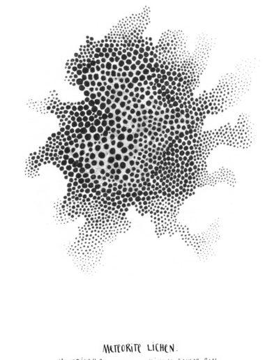 michelegauler_meteorite#90_1080px