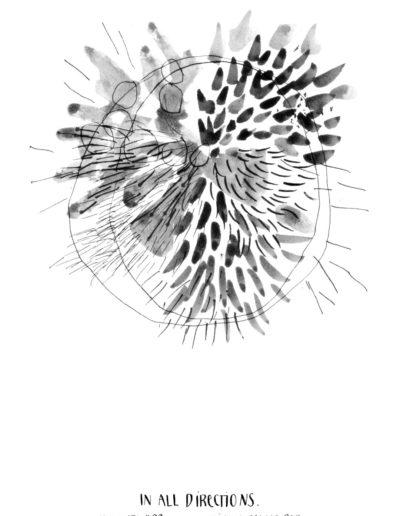 michelegauler_meteorite#99_1080px